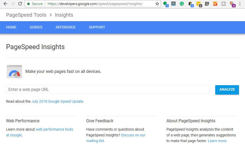 Screen shot of the PageSpeed Insights website.